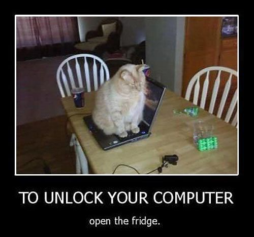 Funny cat... The saying on the picture is dumb but love the picture :) ---Sorry, access to this computer is locked…