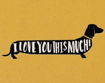 Quirky colourful dachshund sausage dog 'I Love You This Much!' Print A4 green, blue, grey, yellow, red, pink perfect gift valentines day
