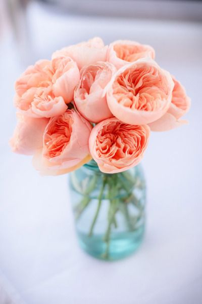 #Peach #Roses in Mason Jar // Find more inspirations at pinterest.com/happysolez/pins