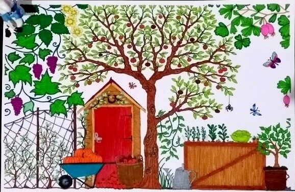 Coloriage jardin secret