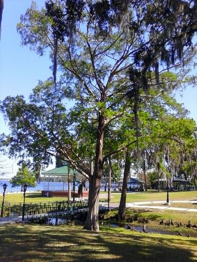Green Cove Springs FL Middle Eastern Single Men