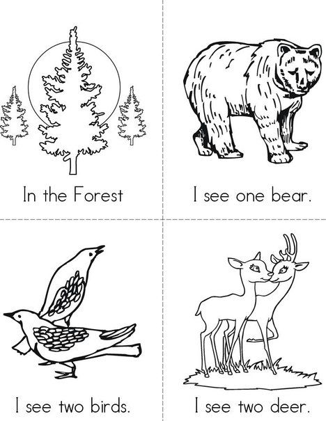 In the Forest free Mini Book