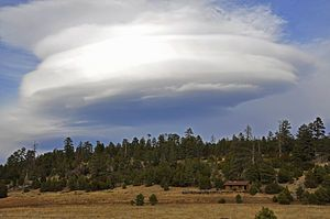 Lenticular clouds (Altocumulus lenticularis) are stationary lens-shaped clouds that form in the