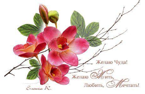 Витёк - Поцелуй меня в губы певучие ~ Плэйкасты ~ Beesona.Ru