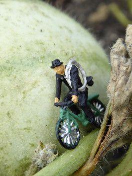 Ein Schornsteinfeger oder Kaminkehrer, der als Glücksbringer mit seinem Fahrrad in Miniatur für diese tolle Makroaufnahme auf einer Herbstfrucht im Garten das Model gibt. Oder hat er es einfach nur eilig auf dem Weg zum nächsten Auftrag? Figuren-Online-Shop auf www.noch-kreativ.de