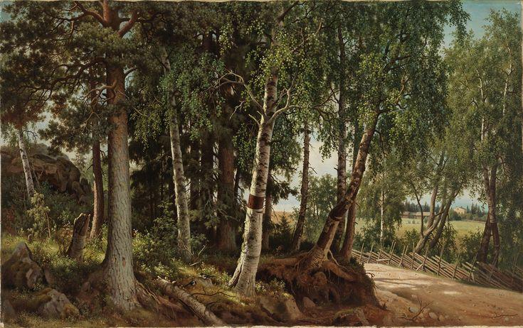 Ferdinand von Wright: Forest Landscape from Haminalahti, 1880. Finnish National Gallery / Ateneum Art Museum.