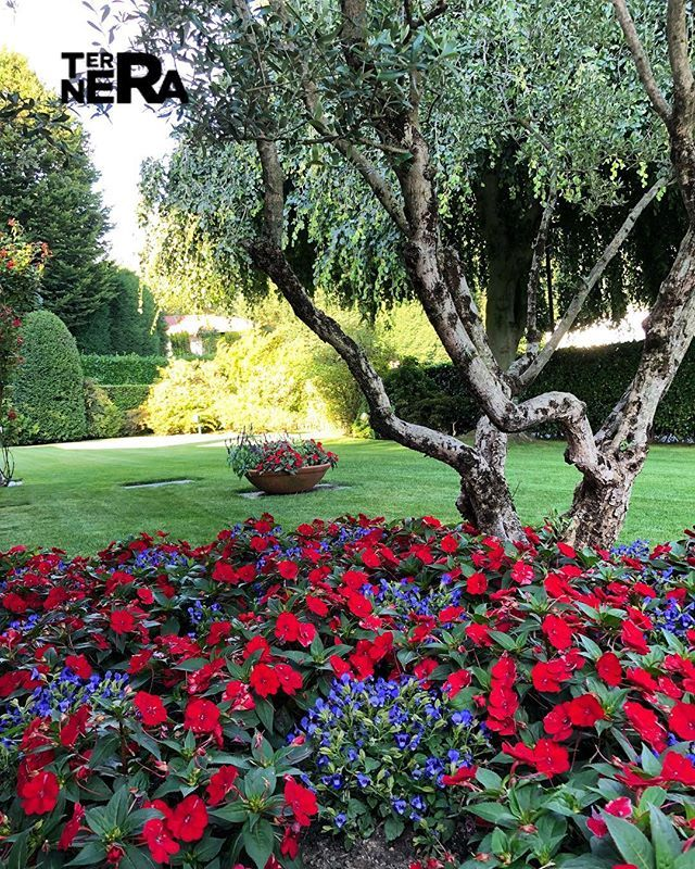 Terranera Terraneraigiardini Istagarden Landscape Landscapedesign Gardendesign Red Gardeners Giardino