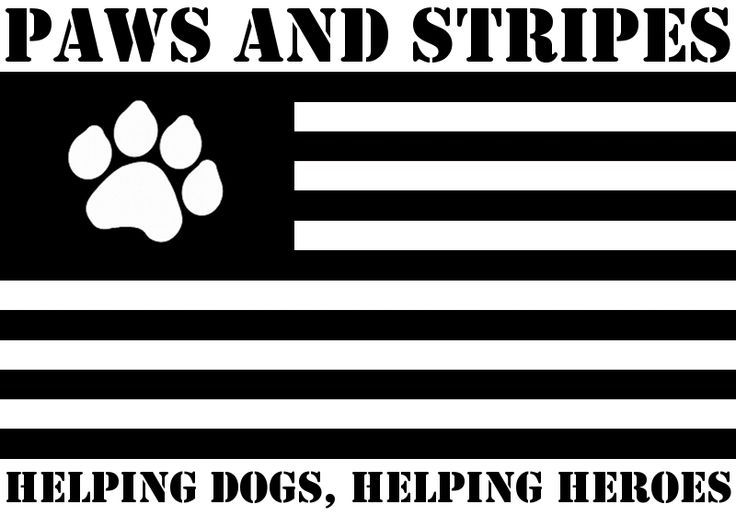 Paws and Stripes provides service dogs for military veterans with post-traumatic stress disorder and traumatic brain injury.​​  ​