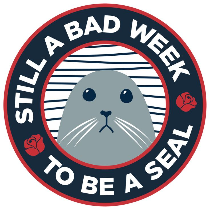 #sharkweek is back starting July 23rd 2017