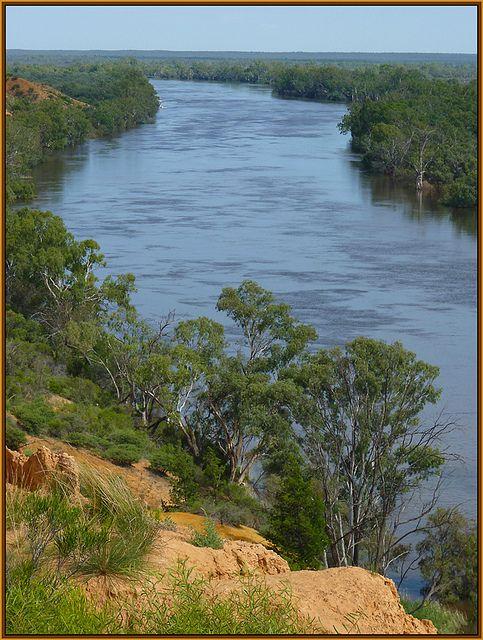 ♥ The Murray River ~ downstream, in flood http://www.bloggerme.com.au/states/murray-basin-foreshore Australia