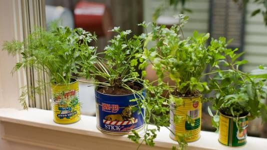 Indoor herb garden.  I am working on this project today.