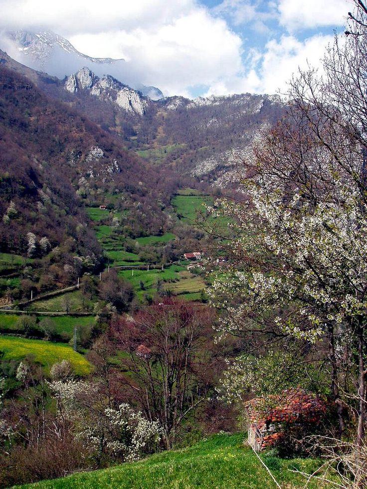 Beleño, Ponga, Asturias   Spain
