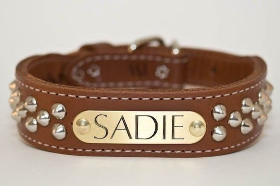Studded dog collar. So awesome: Cone Stud Dog Collar by DogGoneNice on @Etsy, $39.00
