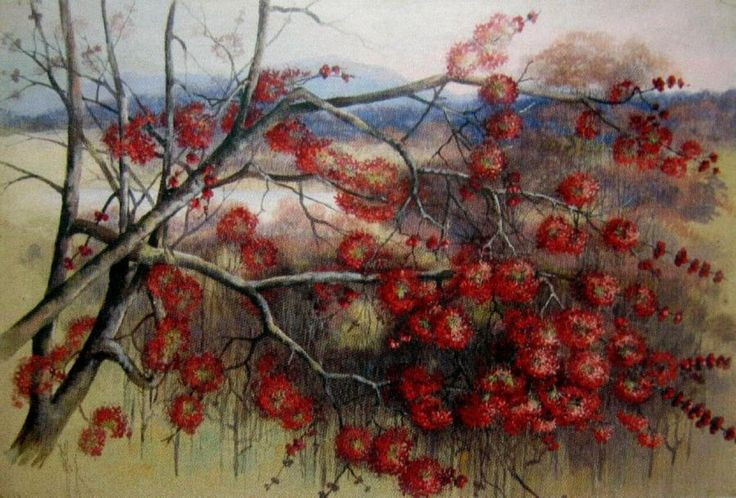 Red Blossom:  Marian Ellis (Ellis) Rowan (1848-1922) Australia