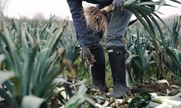 #hunter #gomma #boots #stivali #countryside #campagna #vitadeicampi #countrylife #organicfarm