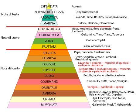 FM PROFUMI e non solo: PROFUMI: Piramide Olfattiva, conosci le fragranze