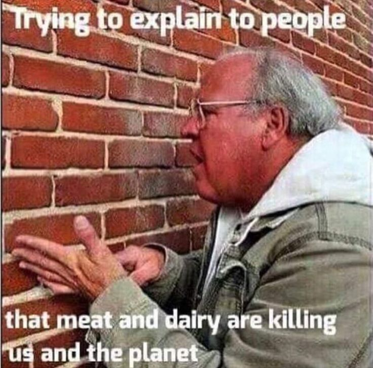 cv social environnementale exemple