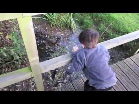 Kingstons 3rd Birthday | Jade Larrah - YouTube