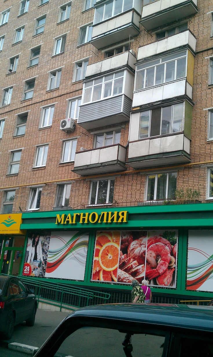 Retail in Moscow suburb (2012)