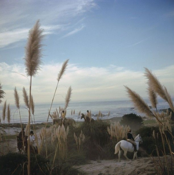 'Pebble Beach' by Slim Aarons available as an Open Edition or Limited Edition Estate Stamped Print (edition size 1/150)  from www.GALERIEPRINTS.comRiders from the Pebble Beach Equestrian Center wend their way through the Californian sand dunes and pampas grass, November 1976. (Photo by Slim Aarons)