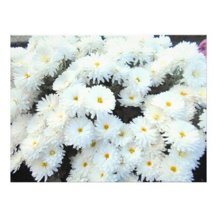 White Chrysanthemum Flowers Photo Print  $67.95  by ErikaHDesign  - cyo diy customize personalize unique