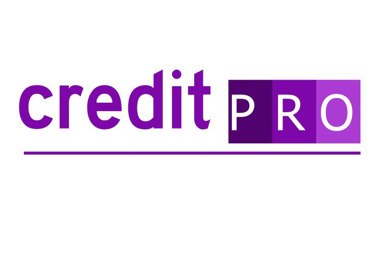 a Basic and professional logo for Credit Pro