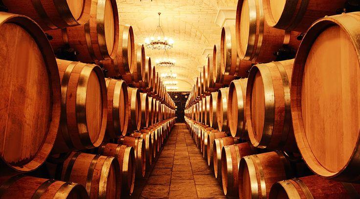 Винный туризм и винодельни на Коста Бланка