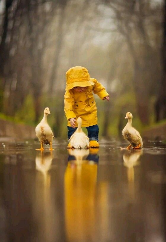 Cute baby. Rain. April Showers. Ducks. Yellow Rain Coat. Countryside.