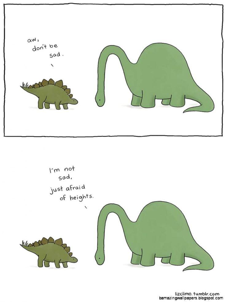 Animal Geschichten