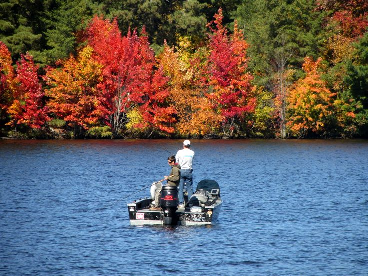 A Colorful Backdrop for Some Sunday Fishing on Big Stone Lake - Photo from  Travel Wisconsin Fall Color Report