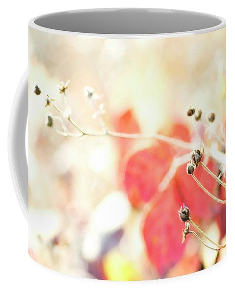 Blackberry Leaves Red By Irina Safonova Coffee Mug featuring the photograph Blackberry Leaves Red by Irina Safonova