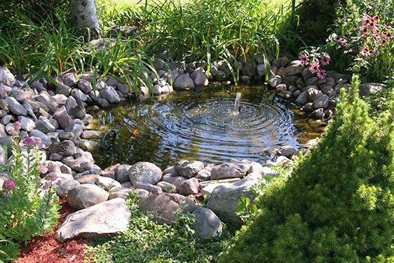 Best 25 garden water features ideas on pinterest water for Small pond features