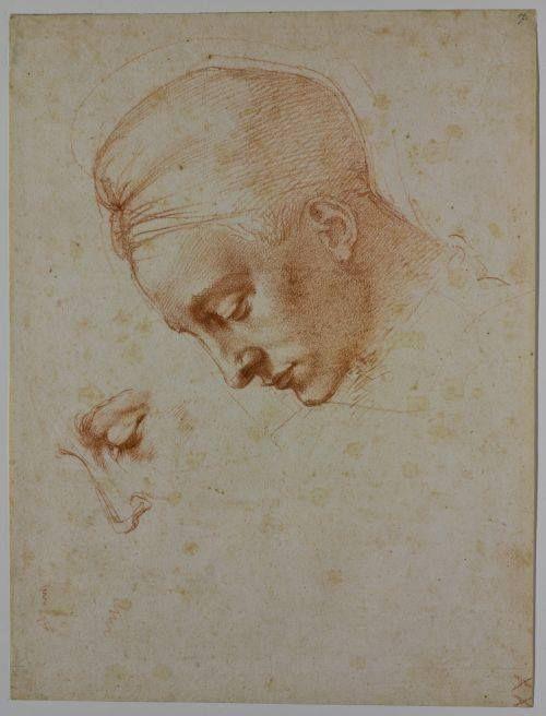 Michelangelo Buonarroti, Studio per la testa di 'Leda', circa 1530, Casa Buonarroti, Firenze