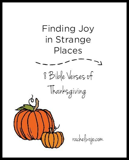 I've discovered that finding joy in strange places is not a NEW concept. In fact, since the fall of man, humanity has worked at seeking happiness. Only we haven't gotten very good at it. We have a tendency to look in the wrong places for joy. Print out these 8 Bible verses or save them to a digital album on your smartphone for a fabulous reminder of true joy and contentment. #onemorestep