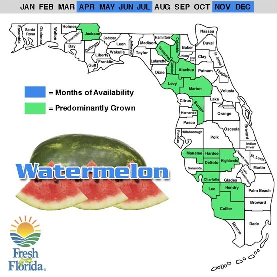 A list of produce in season from the Florida Department of Agriculture.