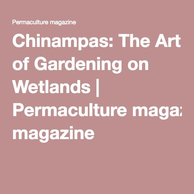 Lovely Chinampas: The Art Of Gardening On Wetlands | Permaculture Magazine