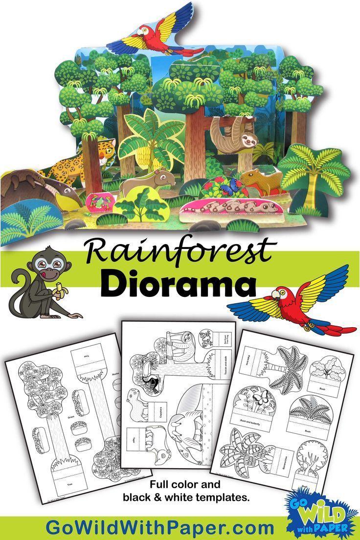 Rainforest Craft Activity Amazon Rainforest Habitat Diorama