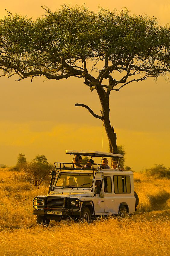 Tourists on safari, Serengeti National Park, Tanzania