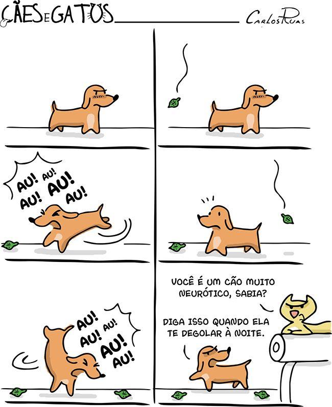 Cães e Gatos – Neurótico