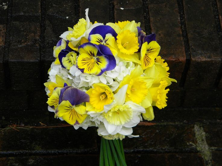 Daffodil Wedding Bouquet | Wedding Flowers from Springwell: Daffodil and Pansy Bouquet for Winter ...