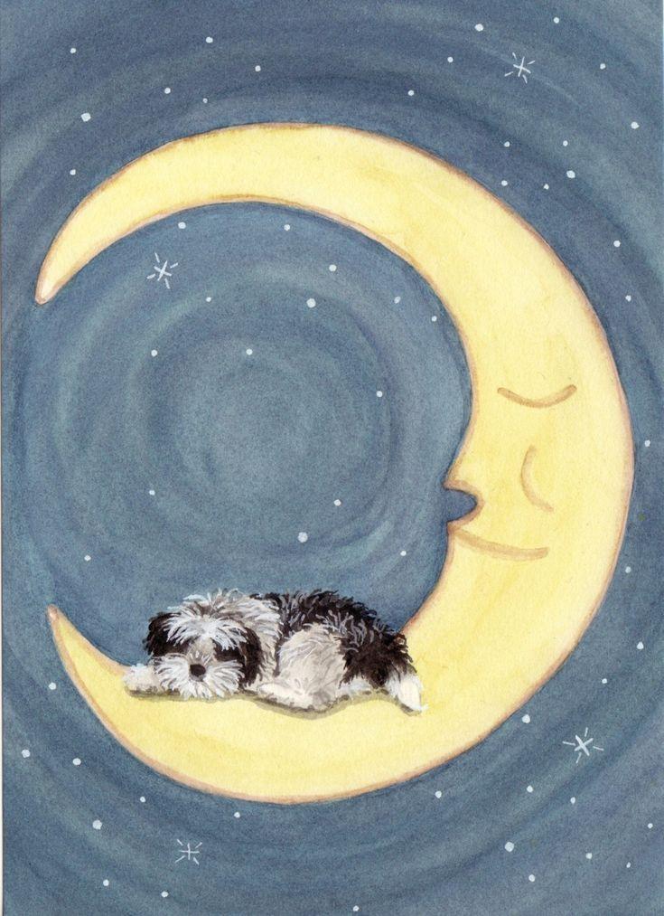 Shih-tzu sleeping on Moon Signed Lynch Art Print. $12.99, via Etsy.