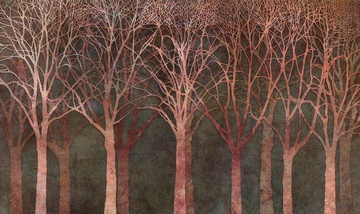 Birch Grove Night Twilight - photo-wallpaper