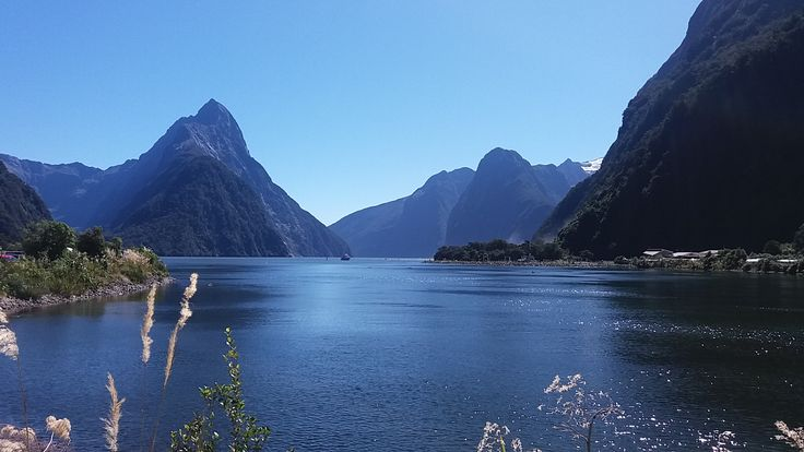 You can see why Milford Sound is New Zealand's most popular attraction!
