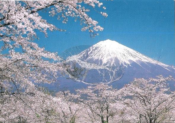 Lung - Monte Fuji