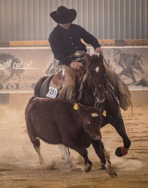 Die Spezialität von Radek Holub ist Team Roping. © AMERICANA