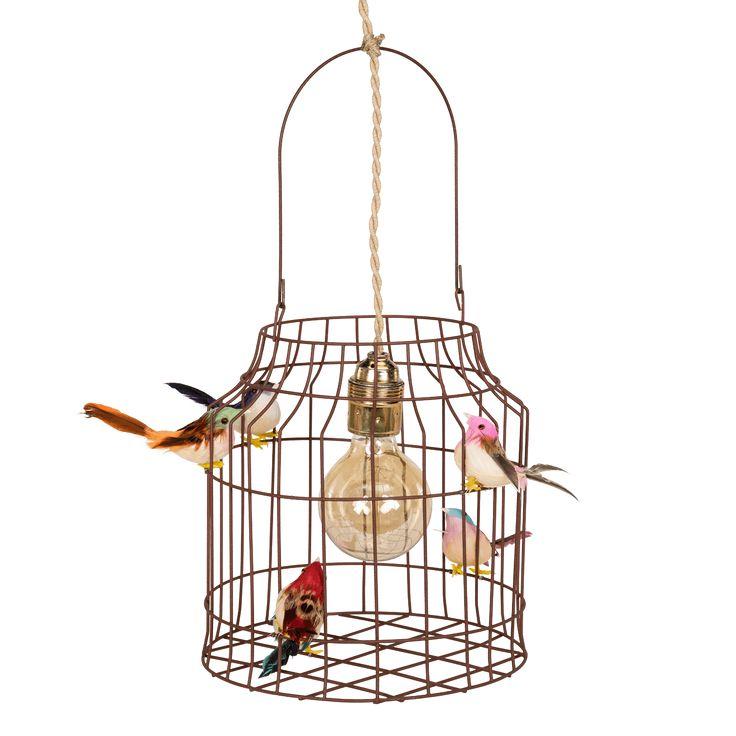 Hanglamp met vogels, net echt! Mooi voor boven de eettafel, werktafel, in de hal of op de kinderkamer. Nooit meer alleen slapen! Bekijk de collectie nu!