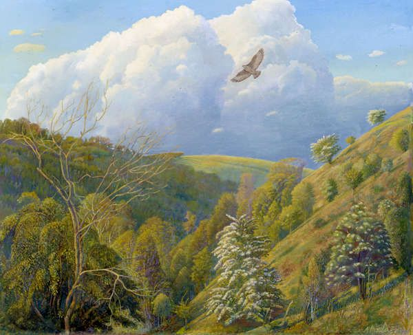 The Hill in Spring (1987) by Ann Arnold