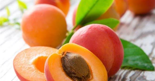 """της Αγγελικής Μήλιου, βιολόγος, medlabnews.gr   Το βερίκοκο (ορθότερα """"βερίκοκκο"""") είναι ο καρπός της βερικοκιάς. Η μακρόχρονη ιστορία τη..."""