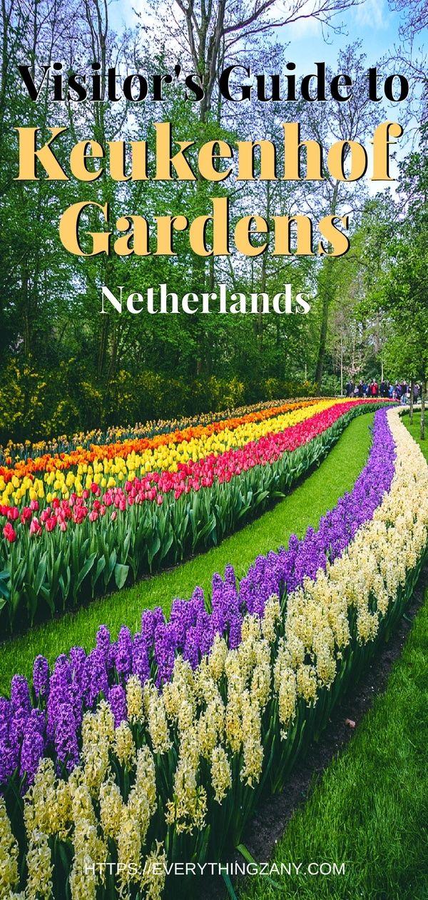 b28c02781ebaa1e4b8d98cf2ce6fb795 - Tours From Amsterdam To Keukenhof Gardens