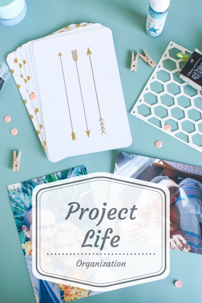i love how she organized her embellishments for project life
